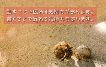ヤドカリの恋愛